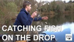 "How do I catch fish ""On the Drop""?"
