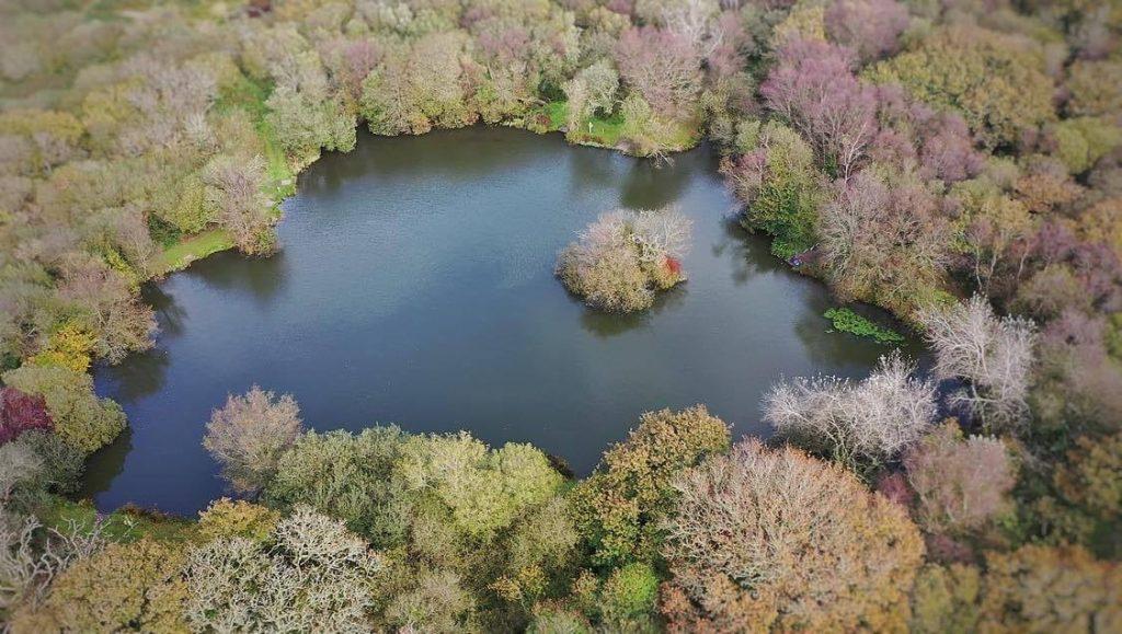 Waterside Fishery_Wood Pool_Aerial View